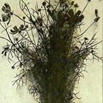 『此処_05』 / 90.9×30.3cm / 和紙、岩絵具、墨
