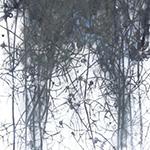 『此処_15』 / 90.9×30.3cm / 和紙、岩絵具、墨