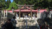 5月は金蛇水神社だね。300年の藤と1500株の牡丹